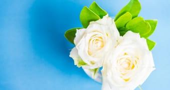 funerales economicos